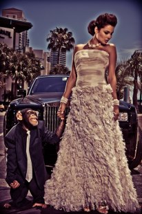 Chimp Fashion Model and Animal Actors